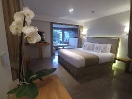 chambre d hote a cannes chambres d hôtes cannes villa barth chambres d hôtes cannes