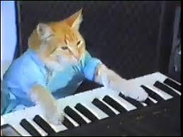 Keyboard Cat Meme - keyboard cat teh meme wiki fandom powered by wikia