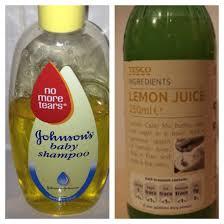 4 sons u0027r u0027 us natural flea shampoo for dogs 1 cup dawn 1 cup