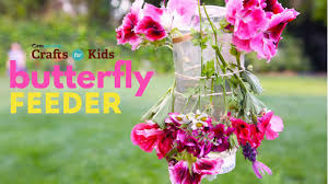 butterfly feeder pbs parents crafts for kids youtube