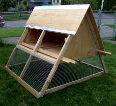 a frame chicken tractor seattle chicken ranching
