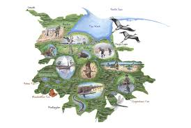 Artistic World Map by Hdc Services Map Design