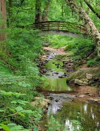 Unca Botanical Gardens Bridge At The Botanical Gardens Of Asheville Carolina
