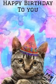 animated birthday cards cats happy birthday bro