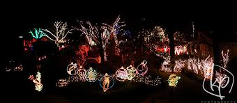 when does the lights at the toledo zoo start toledo zoo lights before christmas 2012 kp photography
