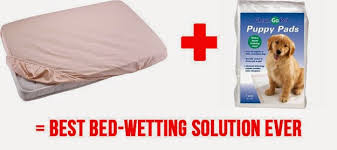 bed wetting solutions life hacks bed wetting solution kids pinterest