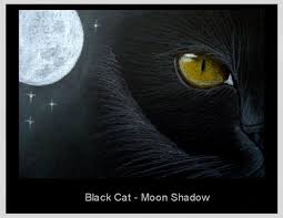 black cat moon shadow by cyra r cancel from gallery