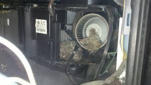 2001 dodge dakota 4 7 specs dodge dakota 4 7 2011 auto images and specification