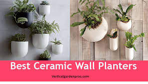 best planters 5 best ceramic wall planters vertical garden kit