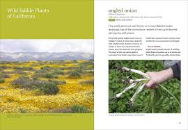 plants native to europe california foraging 120 wild and flavorful edibles from evergreen