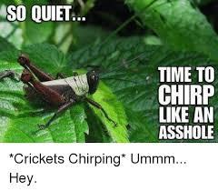 Crickets Chirping Meme - cricket chirp memes memes pics 2018