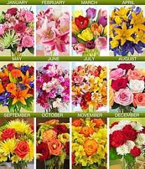 flower of the month club rippe artist florals family faith august flower of