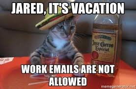 Drunk Cat Meme - jared it s vacation work emails are not allowed drunk cat