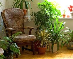 home decor places decorations tall artificial plants for home decor green plants