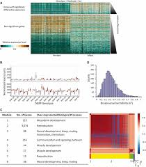 microenvironmental gene expression plasticity among individual