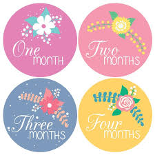penguin baby shower pinkie penguin wall decor pinkie penguin baby monthly stickers