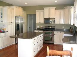 sage green kitchen cabinets painted design ideas cabinet doors