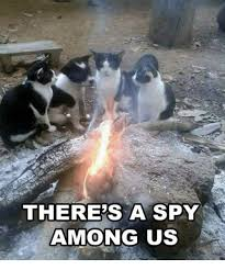 Spy Meme - there s a spy among us meme on sizzle