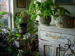 harmonious decorating gardening interior design presents beautiful