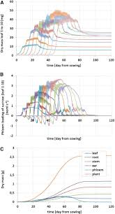 multiscale metabolic modeling dynamic flux balance analysis on a