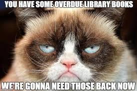 Grumpy Meme - grumpy cat not amused memes imgflip