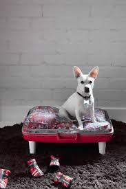 Cute Puppy Beds 24 Best Diy Pet Beds Images On Pinterest Diy Dog Bed Wildlife