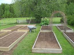Backyard Improvement Ideas by Box Garden Ideas To Get How Remodel Your With And Wood Designs In