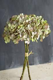 hydrangea bouquet green two tone hydrangea bouquet