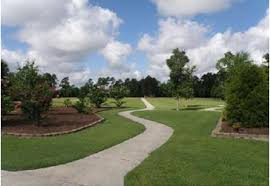 Landscaping Jacksonville Nc by Homes For Sale In The Commons Jacksonville Nc And Camp Lejeune