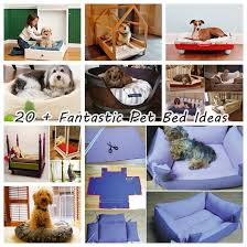20 fantastic pet bed ideas