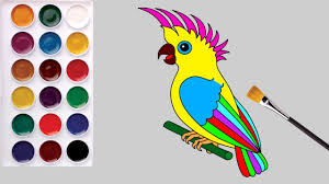 learn colors children coloring pages parrot draw