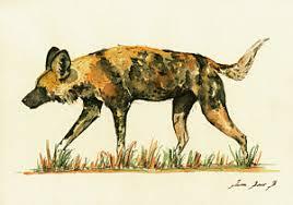 safari ltd african wild dog african wild dog prints fine art america