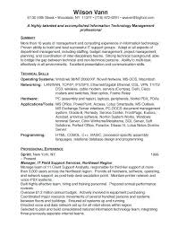 example it resume summary it support resume resume samples free resumes for information