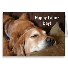 Labor Day Meme - the 25 best labor day meme ideas on pinterest labor day