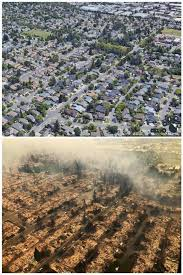 Wildfire Anderson Ca by Before And After Pictures Of Santa Rosa Neighborhood Shows Fire