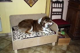 canap chien canapé pour chien mr bricolage on peut compter sur lui