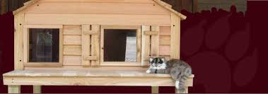 custom large dog cat houses cedar wooden insulated dog house kits