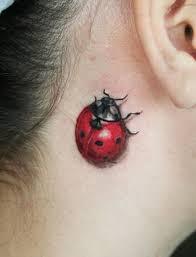 ladybug tattoos pictures of ladybug tattoos jpg stuff