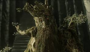 treebeard the one wiki to rule them all fandom powered by wikia