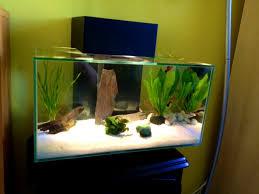 foy modern fish aquarium corner tank one the new died blue uk