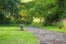 bench in green park with curved pathway and trees stock photo