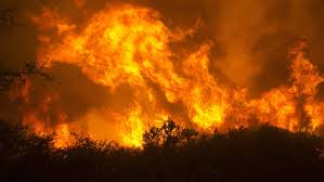 Wildfire Eternal Buy by Judgment By Fire U201capocalyptic Scenes U201d In California As Wildfires