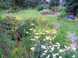 Shrub Garden Ideas Garden Shrubs Evergreen Ghanadverts Club