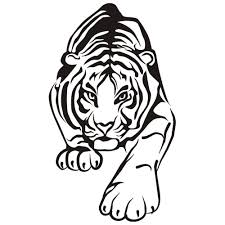 modest tiger coloring pages cool coloring desi 630 unknown
