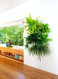 indoor garden wall home design ideas and pictures