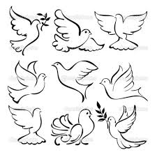 coloring pages graceful how to draw dove bird sketch logos