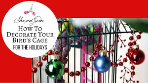 how to decorate your bird u0027s cage for the holidays shaneejudee