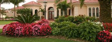 Florida Garden Ideas Central Florida Landscape Photos Commercial Landscaping