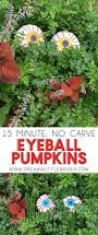 no carve eyeball pumpkins halloween craft dream a little bigger