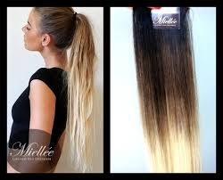 ombre extensions in hair extensions ash ombre by miellee